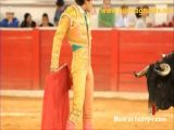 Bullfighter Gets What He Deserves