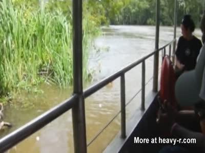 Alligator Devours Wild Hog
