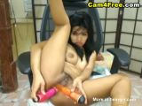 Hairy Asian babe enjoys her toys
