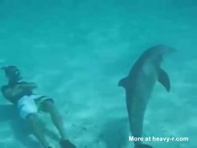 Dolphin Attracted By Divers Pussy