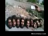 Several Severed Heads