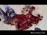 Still alive terrorist with no hands
