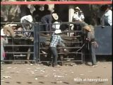Bull Rider's Last Ride