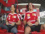 Ferrari Roller Coaster