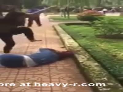 Asian girls fight