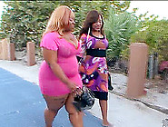 Awesome Lesbian Action With Plump Diamond Mas...