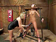 Gorgeous Babe Fucked By Machine And Strapon I...