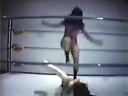 Vintage Mixed Pro Wrestling Beatdown 2 With V...