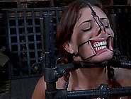 Cici Rodes In Chain Screaming While Her Pussy...