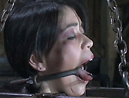 Bdsm Scene With Caged Gal Enjoying Tongue Tor...