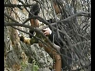 Couple Caught Having A Quickie In The Woods