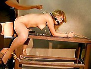 Safira White Gets Her Tight Ass Toyed And Fuc...