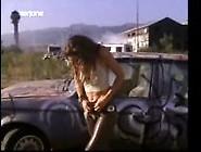 Lola Glaudini In The Handler ()