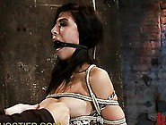 Submissive Sluts Get Abused In Extreme Bdsm C...
