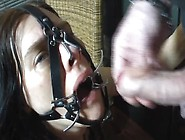 Annabell Sklavin Fucked In Mouth With Spider ...