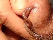 Worm Drunk On My Precum