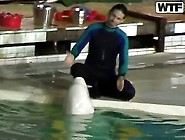 Sweet Young Dolphin Trainer Girl Natasha Got ...
