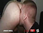 Training Their Sense Of Smell