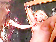 Blond Babe Tied Up And Whipped Savagely