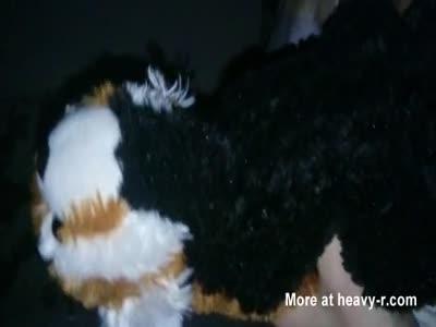 Fucking my girlfriend's teddy bear.