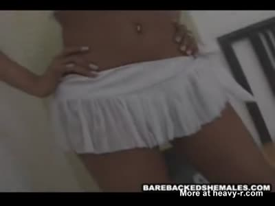 Tranny Babe And Shemale Like Barebacked