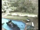 Car Goes For A Swim