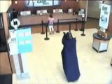 New York bank robbed by Darth Vader