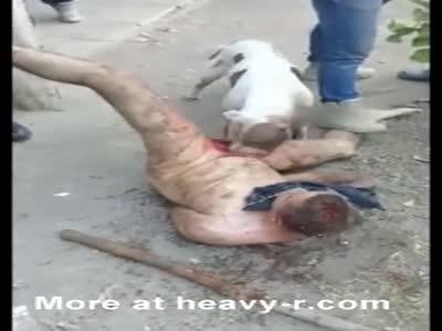 !Brutal! Cartel dog eats men's genitals. [0:34x216p]->