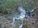 Dead baby thrown out of car on the side of the road