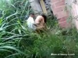 Young Couple Caught Fucking Outdoor