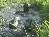 Horny Mud Monster