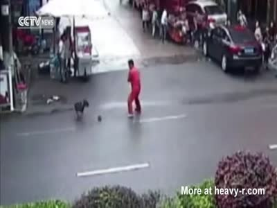 Pitbull Attacks Several Pedestrians
