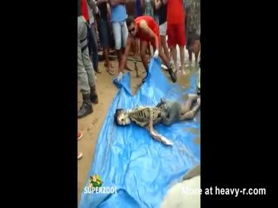 Drowned Boys Skeleton Found