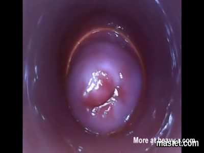 Pussy Cam Shows Insides
