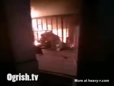 Woman Burning Alive