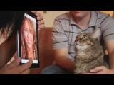 Cat hates Obama