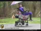 Zebra ride