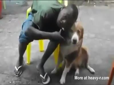 Dog Doesn't Like Black Guy