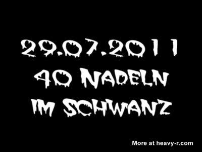 40_Nadeln
