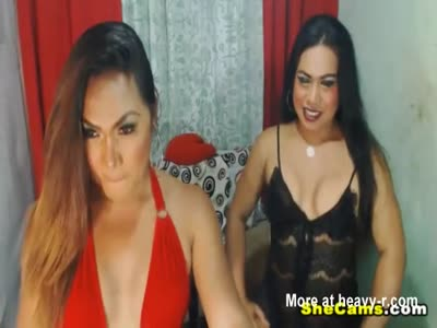 Pretty Hot and Sexy Shemale Babes on Cam