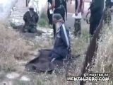 Two Rebel Leaders Executed