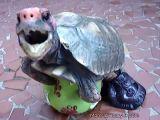 Naugthy tortoise