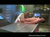 Sex in laboratory